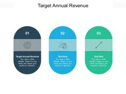 Target Annual Revenue Ppt Powerpoint Presentation Layouts Templates Cpb