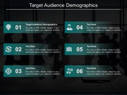 Target Audience Demographics Ppt Powerpoint Presentation Infographics Portrait Cpb