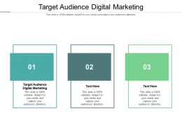 Target Audience Digital Marketing Ppt Powerpoint Presentation Show Tips Cpb