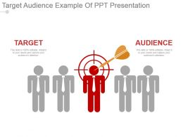 Target Audience Example Of Ppt Presentation