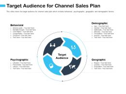 Target Audience For Channel Sales Plan Ethnicity Ppt Powerpoint Presentation File Summary