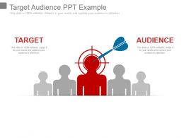 Target Audience Ppt Example