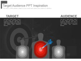 Target Audience Ppt Inspiration