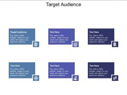 Target Audience Ppt Powerpoint Presentation Infographics Design Inspiration Cpb