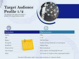 Target Audience Profile Particulars Rebranding Approach Ppt Background
