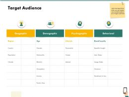 Target Audience Psychographic Ppt Powerpoint Presentation Gallery