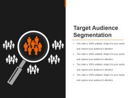 Target Audience Segmentation Powerpoint Slide Presentation Guidelines