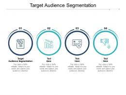 Target Audience Segmentation Ppt Powerpoint Presentation Slides Outline Cpb