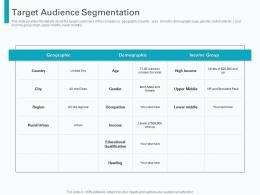 Target Audience Segmentation Pre Seed Round Pitch Deck Ppt Powerpoint Presentation Grid