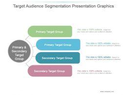 Target Audience Segmentation Presentation Graphics