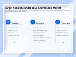 Target Audience Under Total Addressable Market Geographic Ppt Powerpoint Presentation File Graphics