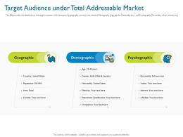 Target Audience Under Total Addressable Market Investor Pitch Deck For Hybrid Financing Ppt Grid