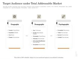 Target Audience Under Total Addressable Market Subordinated Loan Funding Pitch Deck Ppt Powerpoint Model