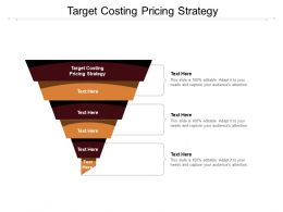 Target Costing Pricing Strategy Ppt Powerpoint Presentation Portfolio Design Inspiration Cpb