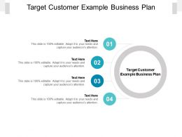 Target Customer Example Business Plan Ppt Powerpoint Presentation Diagrams Cpb