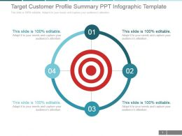 Target Customer Profile Summary Ppt Infographic Template