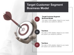 Target Customer Segment Business Model Ppt Powerpoint Presentation Portfolio Rules Cpb