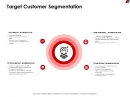 Target Customer Segmentation Psychographic Ppt Powerpoint Presentation Format Ideas