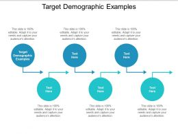 Target Demographic Examples Ppt Powerpoint Presentation Icon Slides Cpb