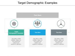 Target Demographic Examples Ppt Powerpoint Presentation Ideas Example File Cpb