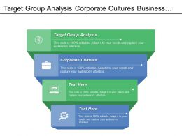Target Group Analysis Corporate Cultures Business Needs Desired Outcomes
