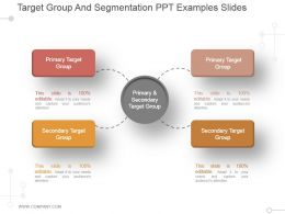 Target Group And Segmentation Ppt Examples Slides