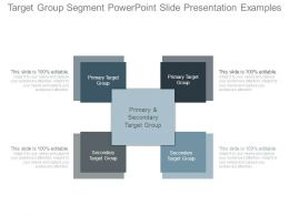 Target Group Segment Powerpoint Slide Presentation Examples