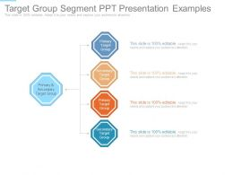 Target Group Segment Ppt Presentation Examples
