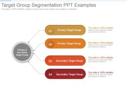 Target Group Segmentation Ppt Examples