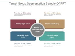 Target Group Segmentation Sample Of Ppt