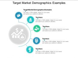 Target Market Demographics Examples Ppt Powerpoint Presentation Icon Graphics Pictures Cpb