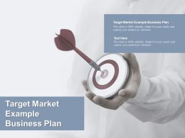 Target Market Example Business Plan Ppt Powerpoint Presentation Slides Cpb