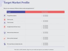 Target Market Profile Story Ppt Powerpoint Presentation Summary Grid