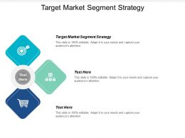 Target Market Segment Strategy Ppt Powerpoint Presentation Icon Show Cpb
