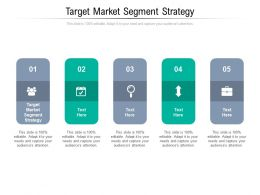 Target Market Segment Strategy Ppt Powerpoint Presentation Professional Picture Cpb