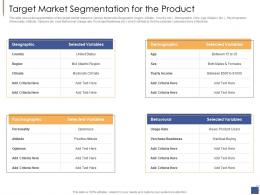 Target Market Segmentation For The Product Investment Generate Funds Private Companies Ppt Rules