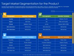 Target Market Segmentation For The Product Moderate Income Ppt Slides