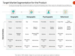 Target Market Segmentation For The Product Ppt Template Visuals