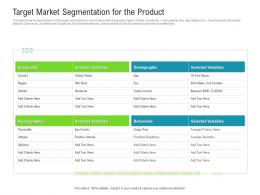 Target Market Segmentation For The Product Raise Funded Debt Banking Institutions Ppt Grid