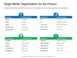 Target Market Segmentation For The Product Raise Government Debt Banking Institutions Ppt Grid