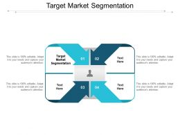 Target Market Segmentation Ppt Powerpoint Presentation Infographics Example Introduction Cpb