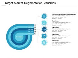 Target Market Segmentation Variables Ppt Powerpoint Presentation Icon Cpb