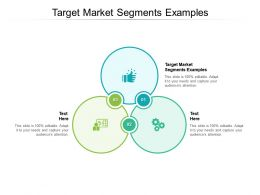 Target Market Segments Examples Ppt Powerpoint Presentation Pictures Structure Cpb