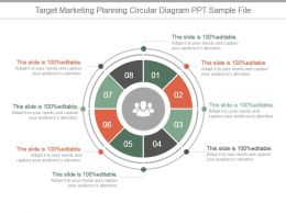 Target Marketing Planning Circular Diagram Ppt Sample File