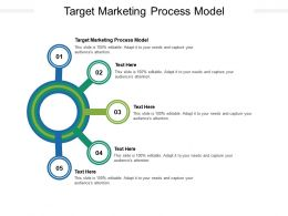 Target Marketing Process Model Ppt Powerpoint Presentation Infographics Cpb