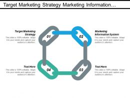 Target Marketing Strategy Marketing Information System Business Risk Cpb