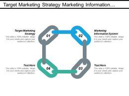 target_marketing_strategy_marketing_information_system_business_risk_cpb_Slide01