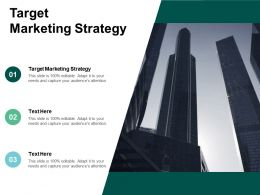 Target Marketing Strategy Ppt Powerpoint Presentation File Show Cpb