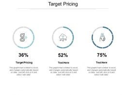 Target Pricing Ppt Powerpoint Presentation Ideas File Formats Cpb