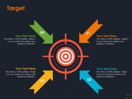 Target Product Segmentation Ppt Summary Designs Download